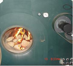 biomass132.jpg